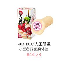 9F - 成人用品 -【日本直邮】JOY BOX/人工阴道 「小型名器2」